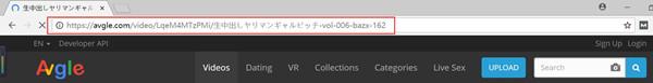 動画の再生URLをコピー