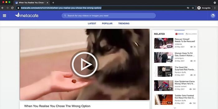 Copy Metacafe Video Link