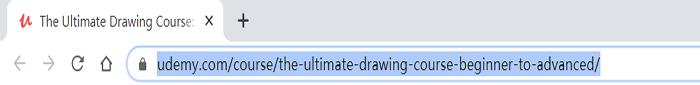 Udemy Copy URL